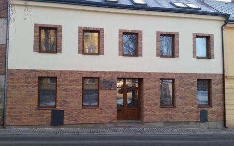 Vysočina: Apartmany u Dvora