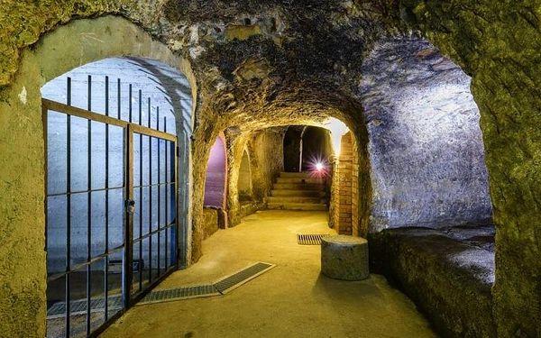 Prohlídka historického podzemí, cca 50 min, počet osob: 1 osoba, Plzeň (Plzeňský kraj)3