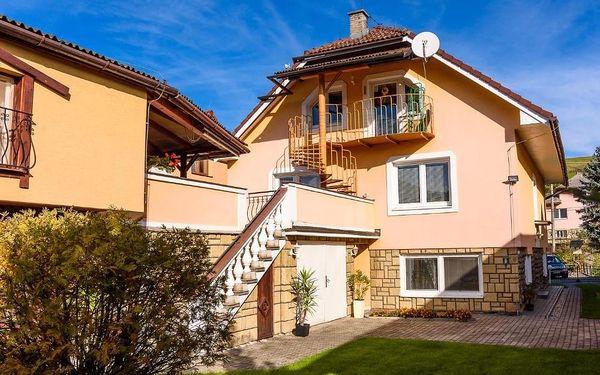 Bešeňová, Nízké Tatry: Apartman Elegant