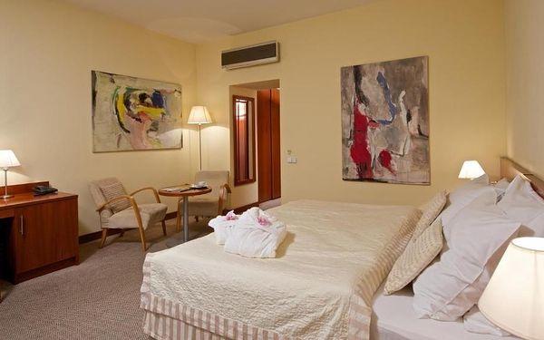 Praha a okolí: Art Hotel Prague