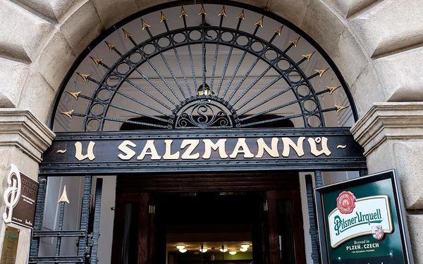 Plzeňsko: Penzion U Salzmannů