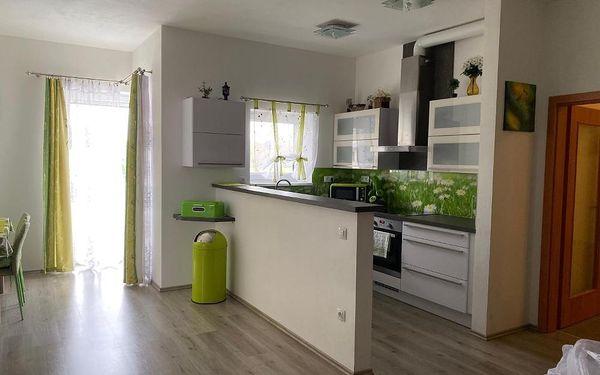 Apartmán Na Lukách Třeboň