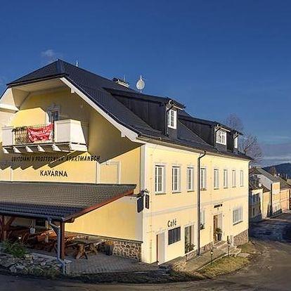Plzeňsko: Aparthotel Hartmanice
