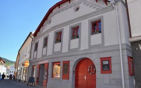 Sušice, Plzeňský kraj: Apartmány U Vavřince