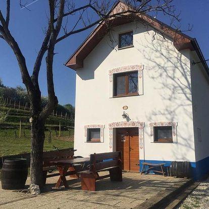 Mutěnice, Jihomoravský kraj: Vinný sklep u Mňa
