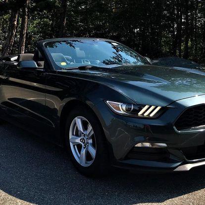 Zapůjčení Ford Mustang kabria na den i víkend