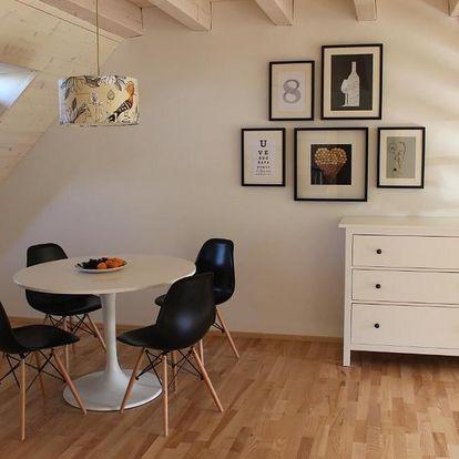 Pavlov, Jihomoravský kraj: Stylový apartmán č. 8 U Venuše, Pavlov u Mikulova