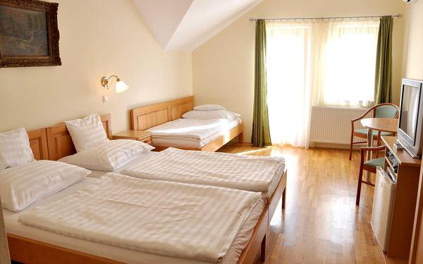 Hotel Ametiszt, Harkány, vlastní doprava, snídaně v ceně3