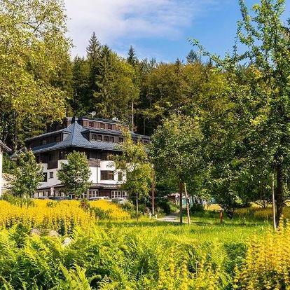Královohradecký kraj: Hotel Soyka