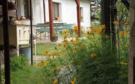 Plzeňsko: Country Cottage Koza