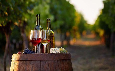 Vinařský pobyt s neomezenou konzumací a degustací ve Vinařství Lintner