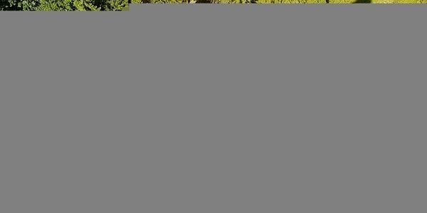 Individuální kurz skalního lezení pro dva | Kružberk/Oskava/Vsetín | Duben - říjen. | 5 - 6 hodin.3
