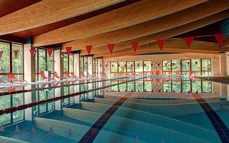 Jánska Dolina, Alexandra Wellness Hotel*** s neomezeným wellness