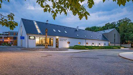 Střední Čechy naproti zámku a blízko Karlštejna a Prahy v Hotelu Panská zahrada **** s wellness a snídaněmi