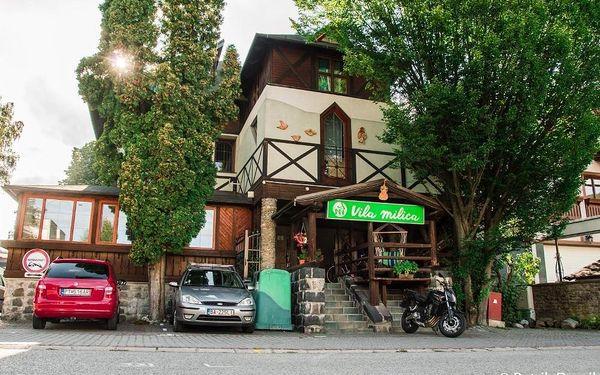 Rajecké Teplice, Slovensko: Penzion Vila Milica