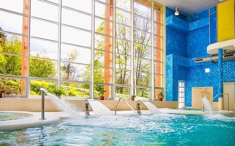 Konstantinovy Lázně: luxusní 4* Hotel Löwenstein ve Studiu/Apartmá s kuchyňkou + wellness, masáž a polopenze
