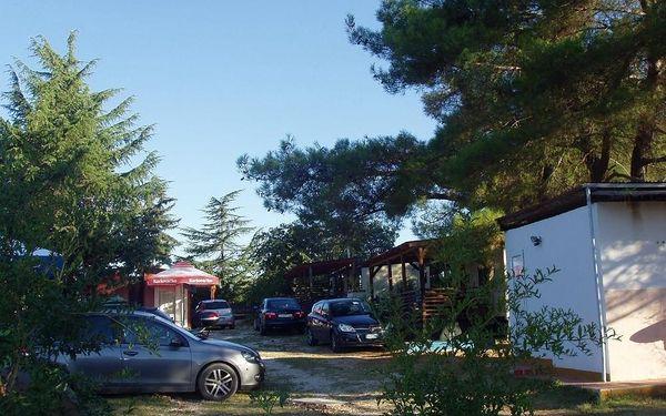 Chorvatsko, Novigrad: Camp Din