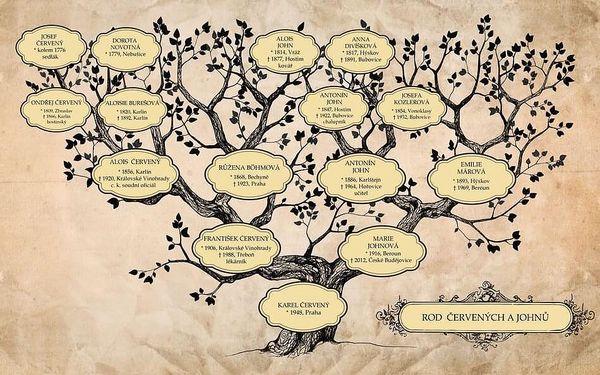 Rodokmen z otcovské nebo mateřské linie do 4. generace4