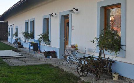 Vysočina: Apartmány Kocourek