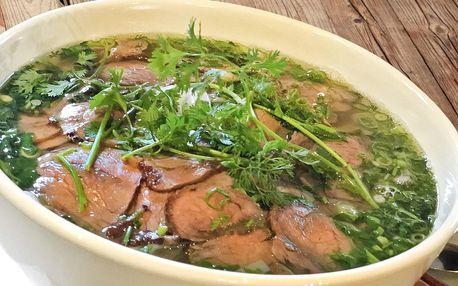 Phở nebo Bún bò Nam Bộ a jarní závitky pro 1 i 2 os.