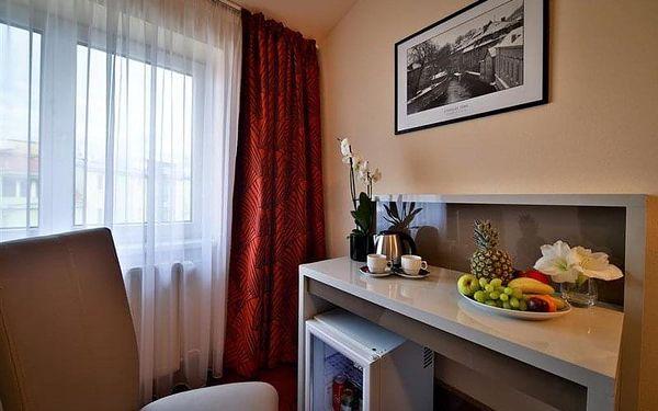 Praha 3 - hotel ARISTON & ARISTON PATIO, Česko, vlastní doprava, snídaně v ceně4