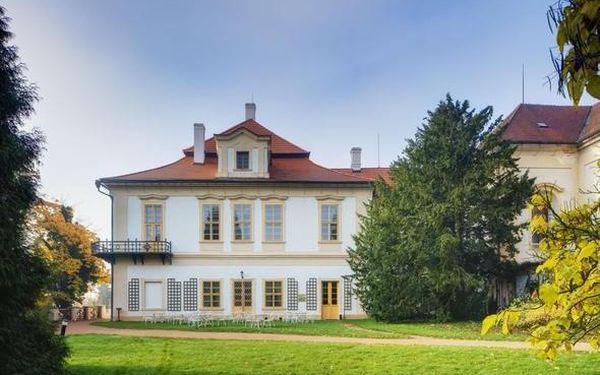 Královský pobyt na zámku Loučeň nedaleko Prahy 3 dny / 2 noci, 2 os., snídaně5