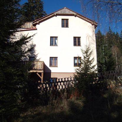 Plzeňsko: Apartmány Domino