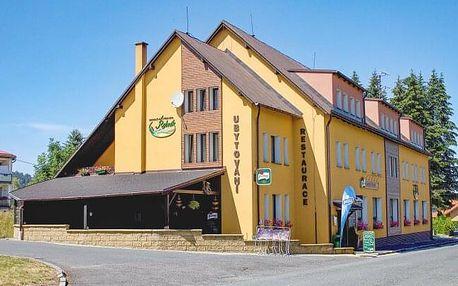 CHKO Český les: Penzion Český Rybník s privátní vířivkou nebo wellness + masáž, bowling a polopenze