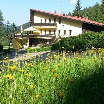 Beskydy - Valašsko: Hotel Babská