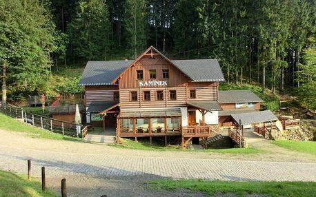 Rokytnice nad Jizerou, Liberecký kraj: Penzion Kaminek