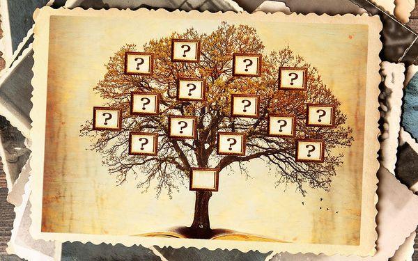 Rodokmen: 4 nebo 5 generací po linii otce či matky