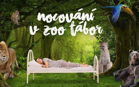Rodinný pobyt v táborské zoo i péče o zvířata