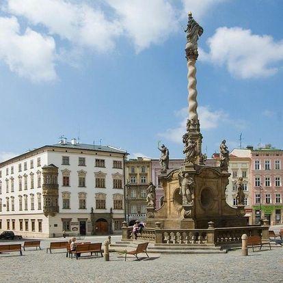 Olomouc, Olomoucký kraj: Apartmán Dolní náměstí