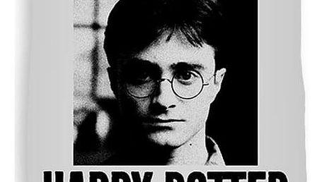 CARBOTEX Osuška Harry Potter Nežádoucí, 70 x 140 cm
