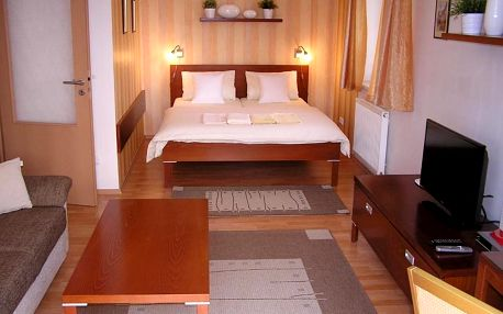 Královohradecký kraj: Gonda Apartments