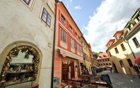 Jižní Čechy: Mini Hotel Abraka