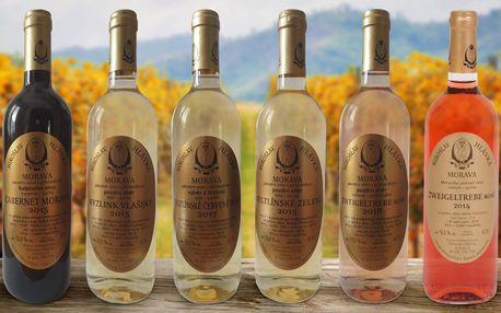 Set 6 prémiových vín z Vinařství Hlávka