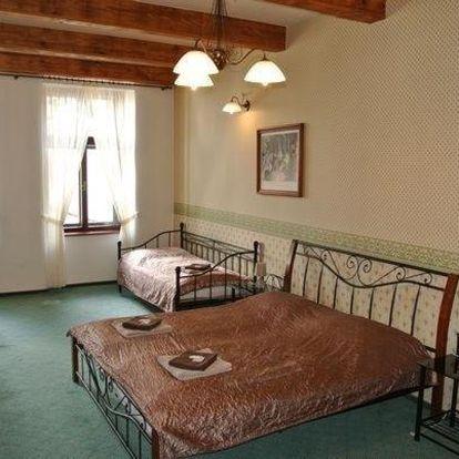 Frýdek-Místek, Moravskoslezský kraj: Hotel Maxim