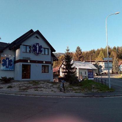 Rokytnice nad Jizerou, Liberecký kraj: Apartman Iveta