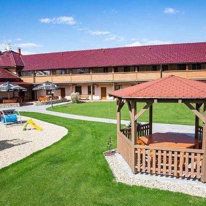 Vysočina: Wellness penzion Medličky