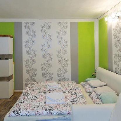 Lipno nad Vltavou, Jihočeský kraj: Apartmán Klárka