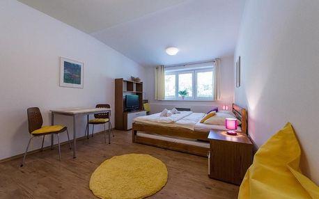 Lipno nad Vltavou, Jihočeský kraj: Apartmán Lipno 20