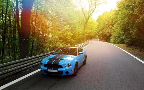 30 min. jako řidič ve voze Mustang GT nebo Camaro SS5