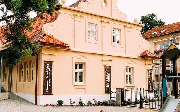 Rajecké Teplice, Slovensko: Penzión Flámm