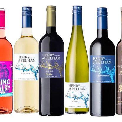 Degustace kanadských vín pro 2