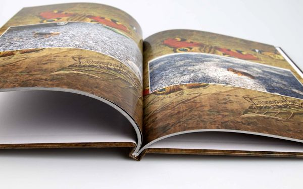 Fotokniha H17 - A4, 32 stran, pevná knižní vazba5
