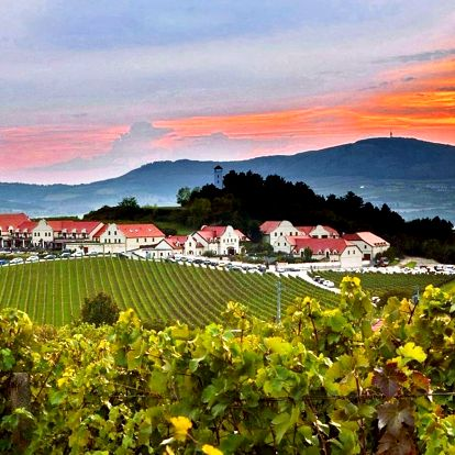 Vinařství U Kapličky: polopenze, wellness a víno