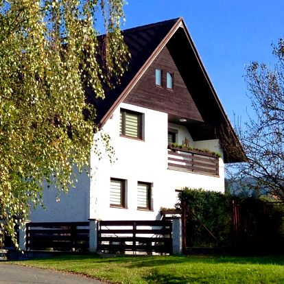 Plzeňsko: Apartment U Anděla