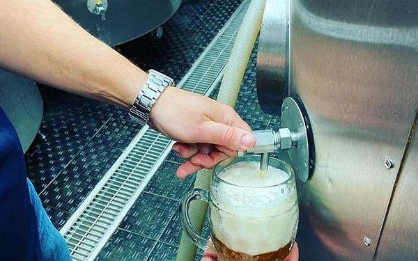 Kurz vaření piva + degustace, cca 4 hodiny, počet osob: 1 osoba, Praha (Praha)3