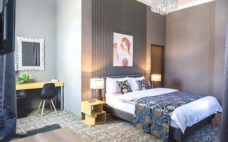 Mariánské Lázně luxusně: Hotel DaVinci **** s privátním wellness, bazénem, procedurami a polopenzí